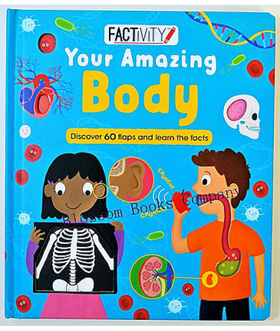 Factivity - Your Amazing Body